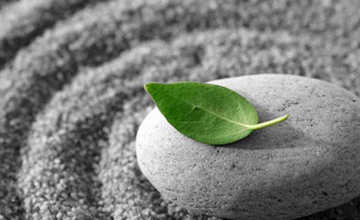 2013.11.13-Mindfulness-e1384355612158